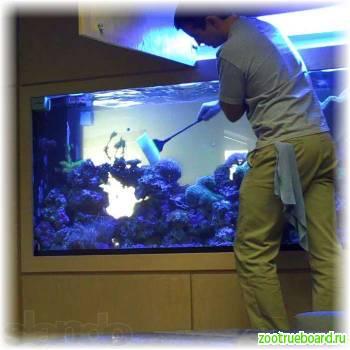 Чистка аквариумов и Обслуживание аквариумов