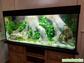 Обслуживание Чистка аквариумов